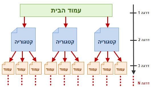 מבנה היררכיית העמודים באתר