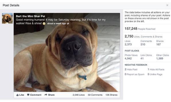 תובנות בפייסבוק