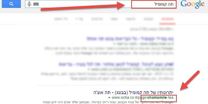 כתובת URL מתורגמת