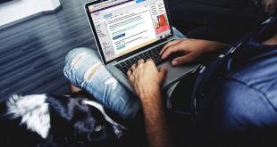 פרוייקטים של קידום אתר בהם צריך מתכנת