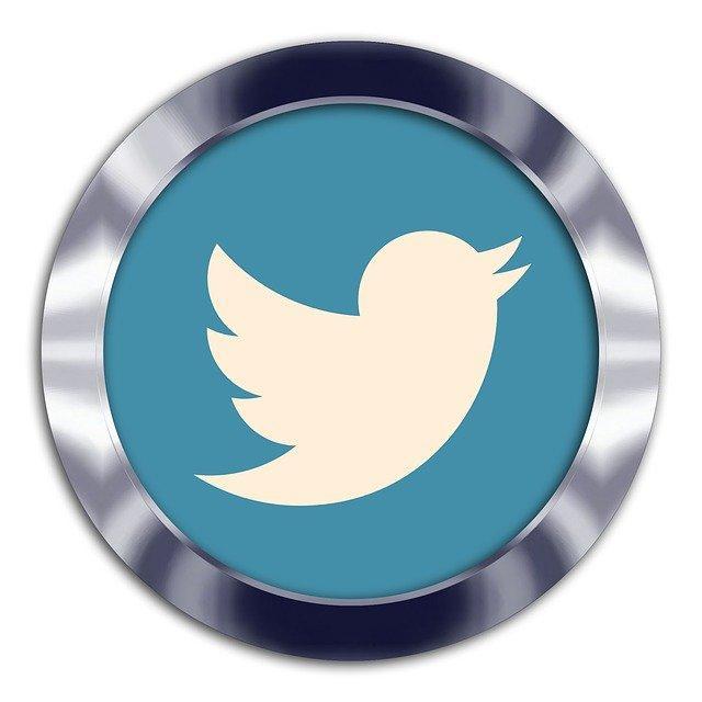 מנוי חודשי לטוויטר