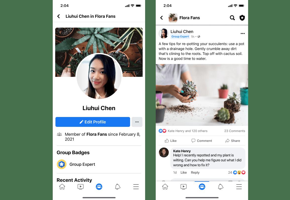 מה זה מומחה קבוצה בפייסבוק